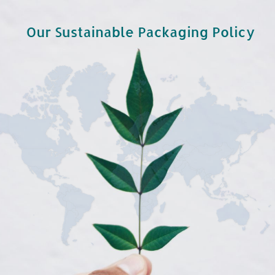 environmental policy i